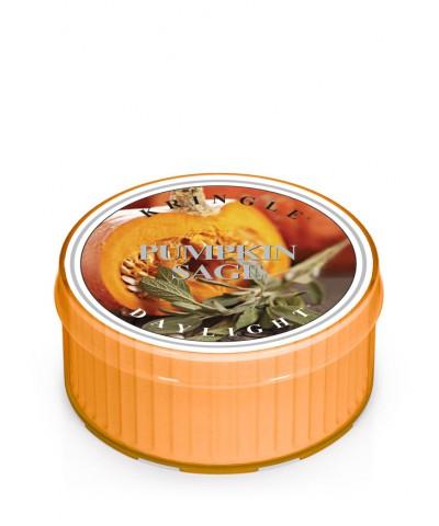 Pumpkin Sage - Dynia i Szałwia (Daylight)