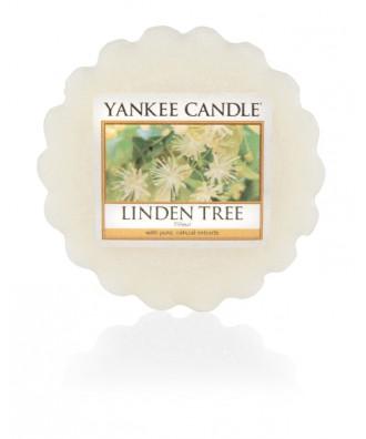 Linden Tree - Drzewo Lipy (Wosk Zapachowy)