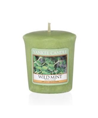 Wild Mint - Dzika Mięta (Votive)