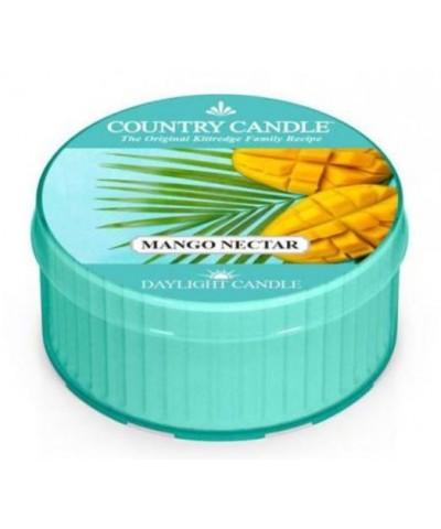 Country Candle - Mango Nectar - Daylight