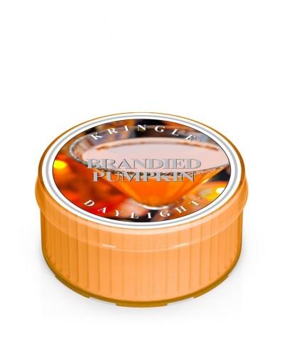 Brandied Pumpkin - Dynia i Koniak (Daylight)