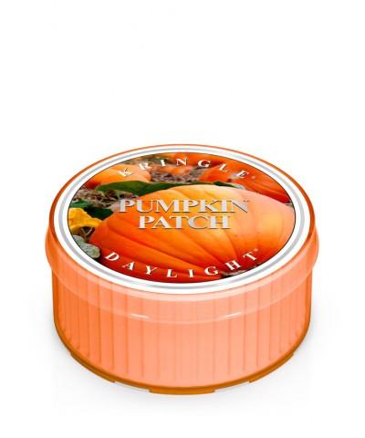 Pampkin Patch - Dyniowa Grządka (Daylight)