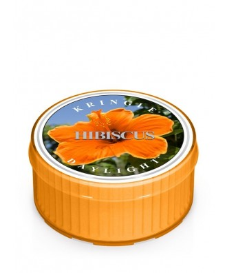 Kringle Candle - Hibiscus - Hibiskus - Daylight