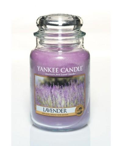 Lavender - Lawenda (Słoik Duży)