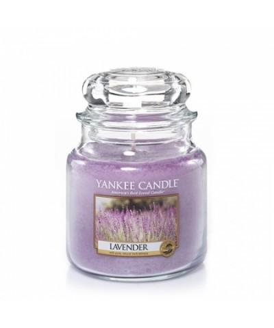 Lavender - Lawenda (Słoik Średni)