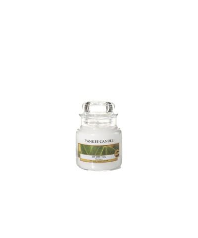White Tea - Biała Herbata (Słoik Mały)