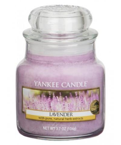 Lavender - Lawenda (Słoik Mały)
