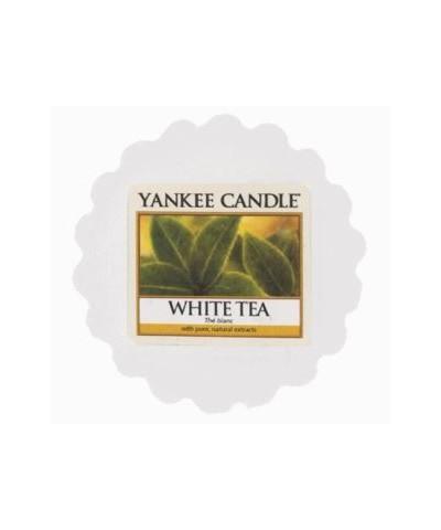 White Tea - Biała Herbata (Wosk)
